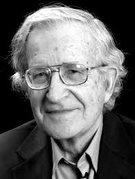because we say so noam chomsky author photo