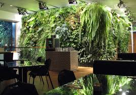 indoor green wall with amazing amazing office plants