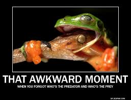 Image - 358552] | That Awkward Moment | Know Your Meme via Relatably.com