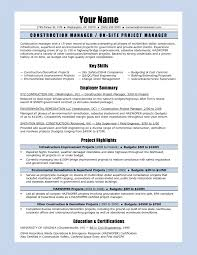 project server administrator resume cipanewsletter resume project administrator resume