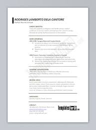 successful resume examples resume templates  how to create a good       successful