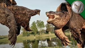 Alligator Snapping <b>Turtle</b> vs Common Snapping <b>Turtle</b> - YouTube