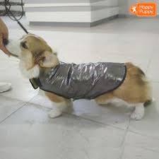 Летняя одежда - Интернет-супермаркет для владельцев <b>собак</b> ...