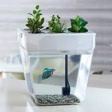 Купить <b>набор для выращивания</b> растений в интернет-магазине в ...