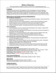 urdu essays internet