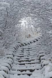 Bildergebnis für Schnee Schnee Schnee