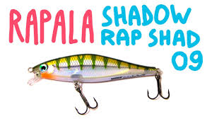 <b>Rapala Shadow</b> Rap Shad SDRS - 09 | Обзор <b>воблера</b> - YouTube