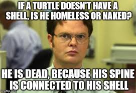 Dwight Schrute Memes - Imgflip via Relatably.com