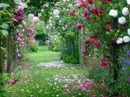 """Résultat de recherche d'images pour """"image gratuite de jardin fleuri"""""""