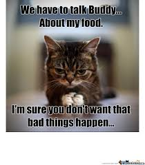 Hungry Cat by karotte - Meme Center via Relatably.com