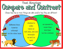compare contrast essay gmawriters