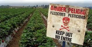 """Résultat de recherche d'images pour """"pesticides phytosanitaire"""" pollution de l'eau glyphosate"""""""