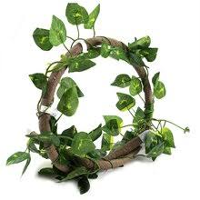 <b>Jungle</b> Cup reviews – Online shopping and reviews for <b>Jungle</b> Cup ...