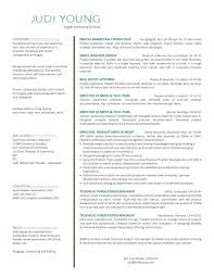 resume b2b marketing manager s n marketing resume