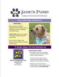 volunteer click here to print jane s fund flyer star dog walking