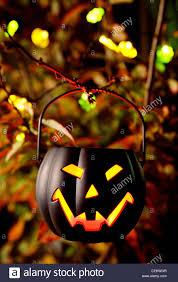 A <b>black pumpkin Halloween</b> lantern hanging up in a <b>tree</b> with fairy ...