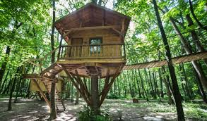 Top Sources of Treehouse Plans You Need to Visit