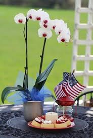 day orchid decor: memorial day orchid decor memorial day orchid decor memorial day orchid decor
