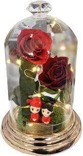 GHGENGI Rose Glass Cover Eternal Flower Gift Box ... - Amazon.com