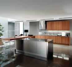metal kitchen extraordinary minimalist metal kitchen cabinets ideas