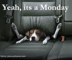 Monday Morning Humor on Pinterest | Lol, Humor and Ha Ha via Relatably.com