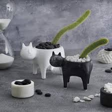 Product Of The Week: <b>Cute Cat</b> Planters