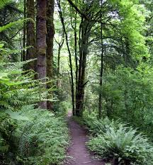forest park portland oregon