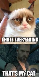 Grumpy Cat: Image Gallery (Sorted by Favorites) | Know Your Meme via Relatably.com