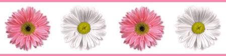 Resultado de imagen para flower borders images