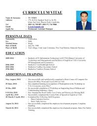 programmer senior programmer resume web example of modern cv best gallery of resume writing samples