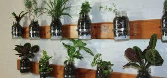 diy build a mason jar herb garden hero image build diy mason