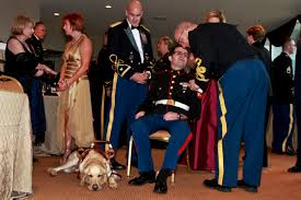 us department of defense photo essay  marine corps cpl steven schulz an iraq war veteran who relies on sonny
