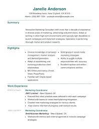 marketing combination resume   resume helpmarketing combination resume