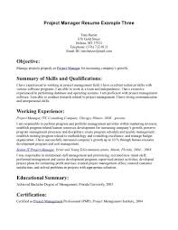 objective summary of skills project manager resume paragraph objective summary of skills project manager resume paragraph example
