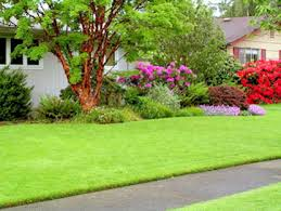 Small Picture Edinburgh Landscaping Design Landscapers Gardeners