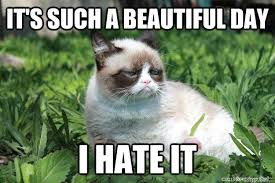 It's such a beautiful day I hate it - grumpy cat hates nature ... via Relatably.com