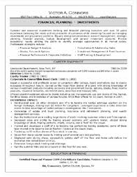 resume professional resume cv cover letter and example template professional resume formatting