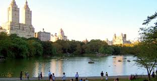 Image result for central park sightseeing