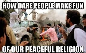 Top-Memes-make-fun-of-our-peaceful-religion.jpg via Relatably.com