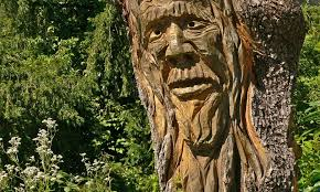 Image result for pictures of woodcarvings