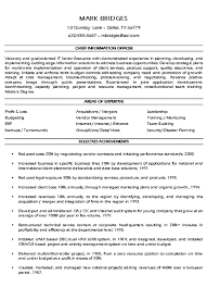 Executive CV Example  Finance Director Distinctive Documents