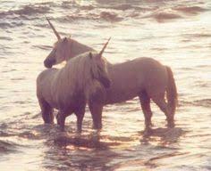 86 Best The Last <b>Unicorn</b> images | The last <b>unicorn</b>, <b>Unicorn</b> ...