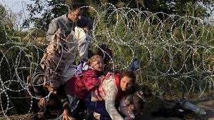 Resultat d'imatges de syrian refugees europe