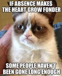 Grumpy cat memes on Pinterest   Grumpy Cat Meme, Grumpy Cat and ... via Relatably.com