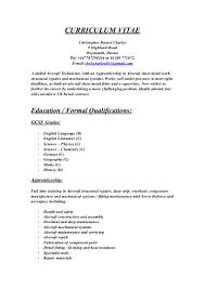 cv pdf document