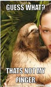 rape sloths | rape sloth Generator | Funny | Pinterest | Sloths ... via Relatably.com