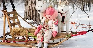 Картинки по запросу карелия зимой хаски
