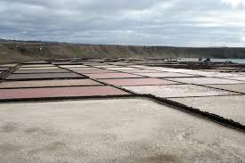 Resultado de imagem para impactos ambientais das empresas salineiras