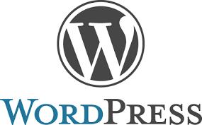 My second wordpress development