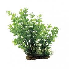 <b>Искусственное растение</b> ArtUniq Bacopa red-<b>green</b> 20